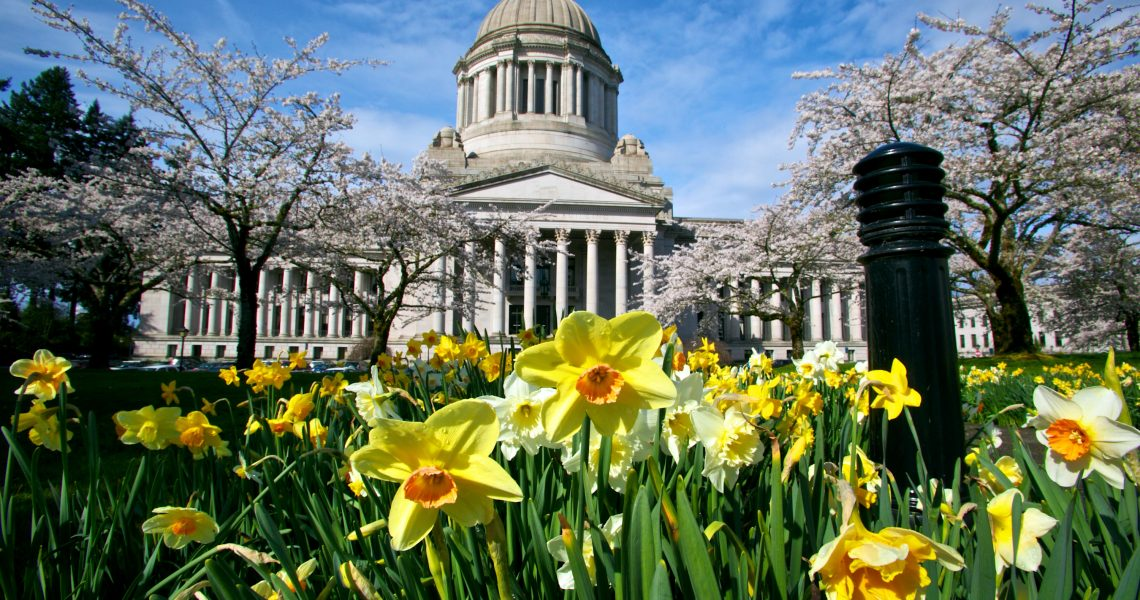 Legislative Update - Just 9 days left of the Regular Session!