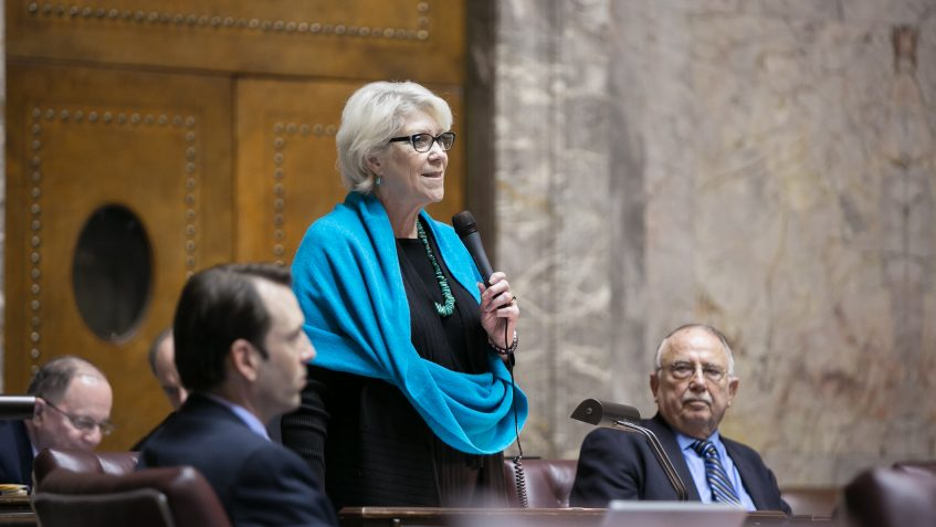 Sen. Darnielle speaks while standing at her desk on the Senate floor. She is holding a microphone.