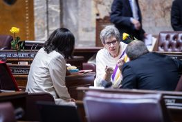 Sen. Darneille talking with two other senators on the Senate floor.