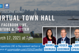 Virtual Town Hall details