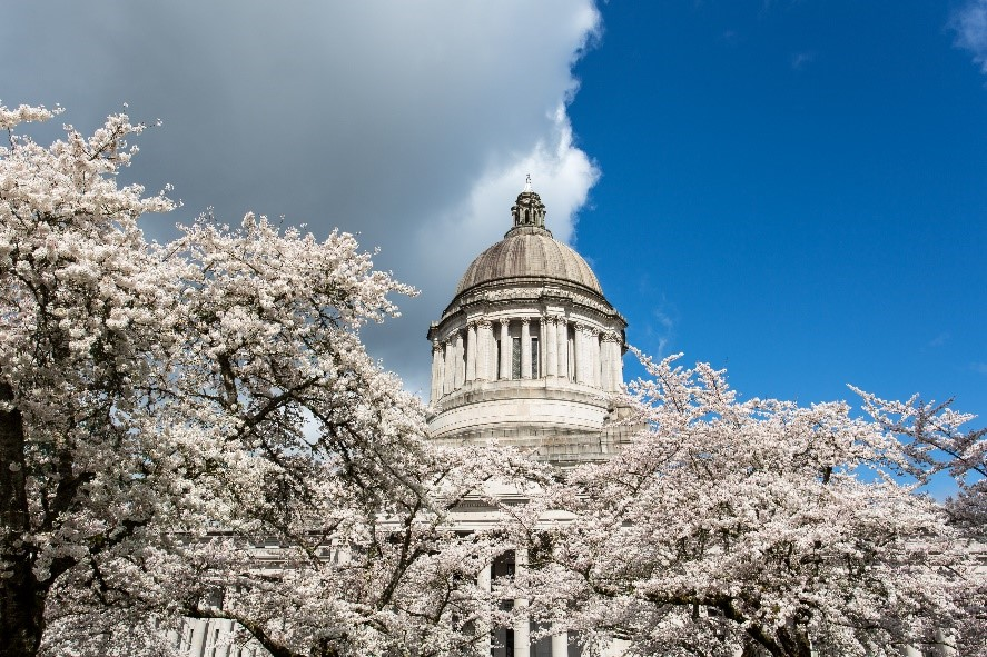 Car License Tabs and the Transportation Budget: An Update from Olympia
