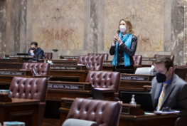 WA State Senator Patty Kuderer (D-Bellevue) giving a speech on the Senate floor during the 2021 legislative session