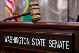"""A gavel is staged above a """"Washington State Senate"""" name plate."""