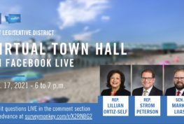 WA 21st Legislative District Town Hall graphic: Virtual Town Hall on Facebook LIve Feb 17, 2021, 6-7 p.m.
