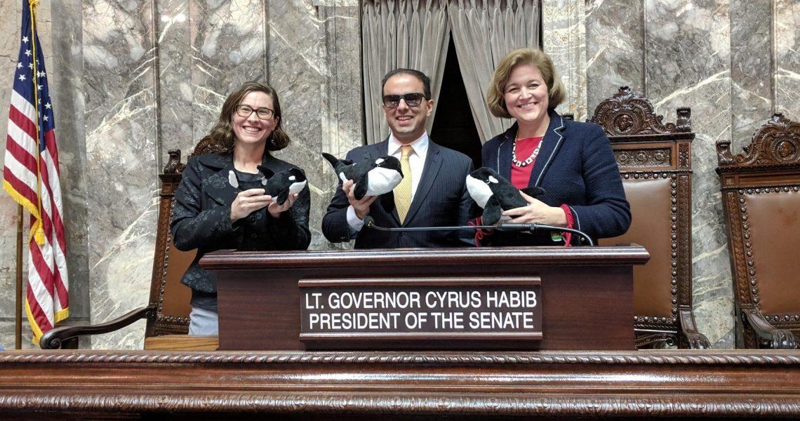 Senate passes legislation to protect southern resident orcas