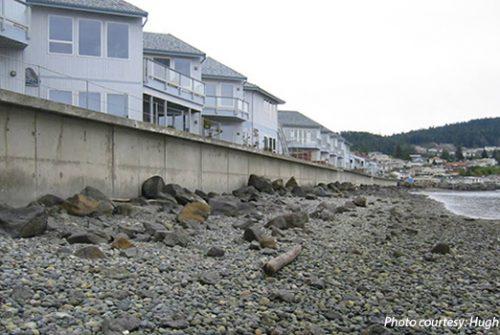 shoreline armor seawall