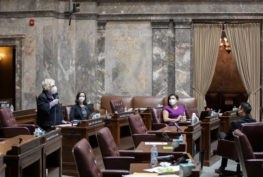 Sen. Wilson speaks while at her desk on the mostly empty Senate floor, holding a microphone. Three other senators sit at a distance at their desks, and everyone is wearing N95 face masks.