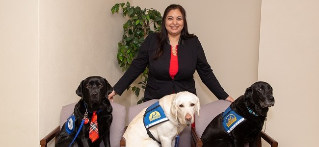 Senator Manka Dhingra smiles while three therapy dogs sit in chairs in front of her