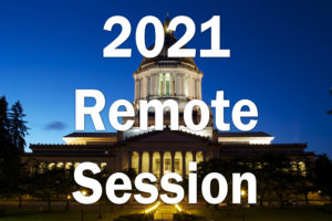 2021 Remote Session